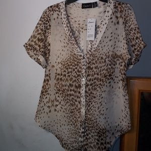 Cassee's Short Sleeve Sheer Blouse Size M